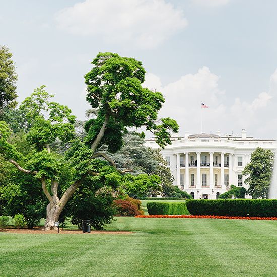 original-201406-HD-washington-dc-white-house-trees.jpg