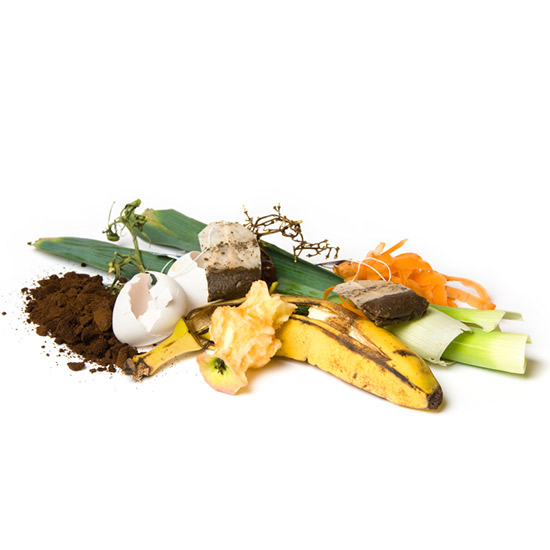 New York's Composting Revolution