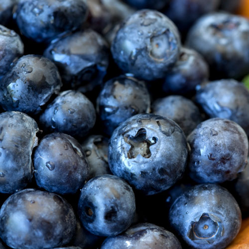 original-201408-HD-fw-connect-soyjoy-blueberries-syrah.jpg