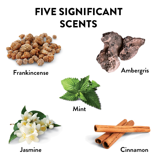 The 5 Most Important Scents in the World