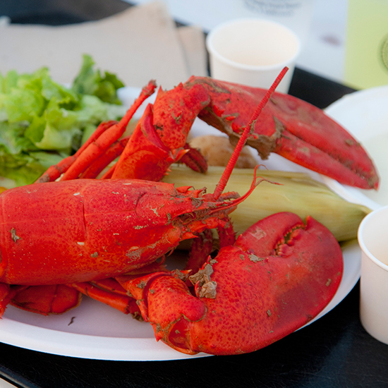 Lobster Bake Fanatics: Bowdoin