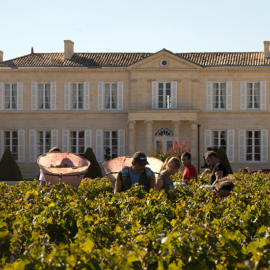 What You Need to Know About the 2012 Bordeaux Vintage