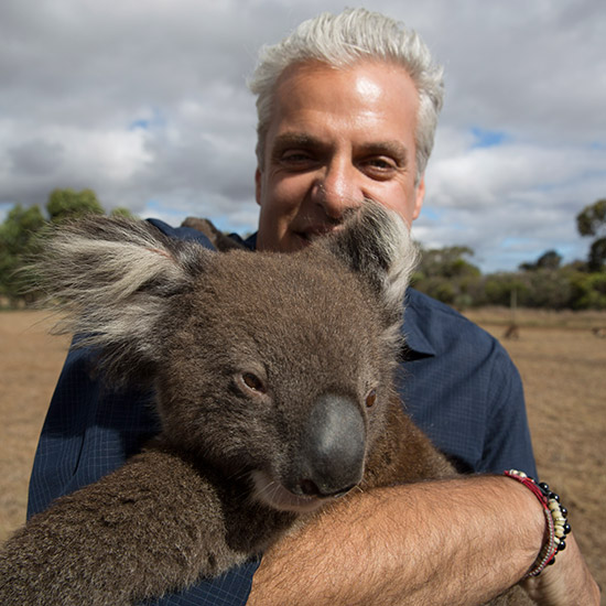 original-201502-HD-eric-ripert-with-koala.jpg