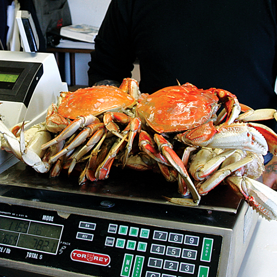 Oregon: Pristine Beaches and Fresh-Caught Crab