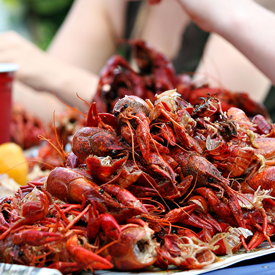 Crawfish Boil: Tulane University