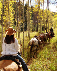 Vail, On and Off the Trail: Bearcat Stables