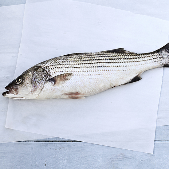 Chefs Pledge to Save the Striped Bass