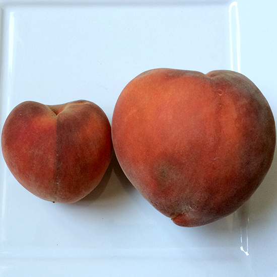 FRUIT0815-HD-peaches.jpg