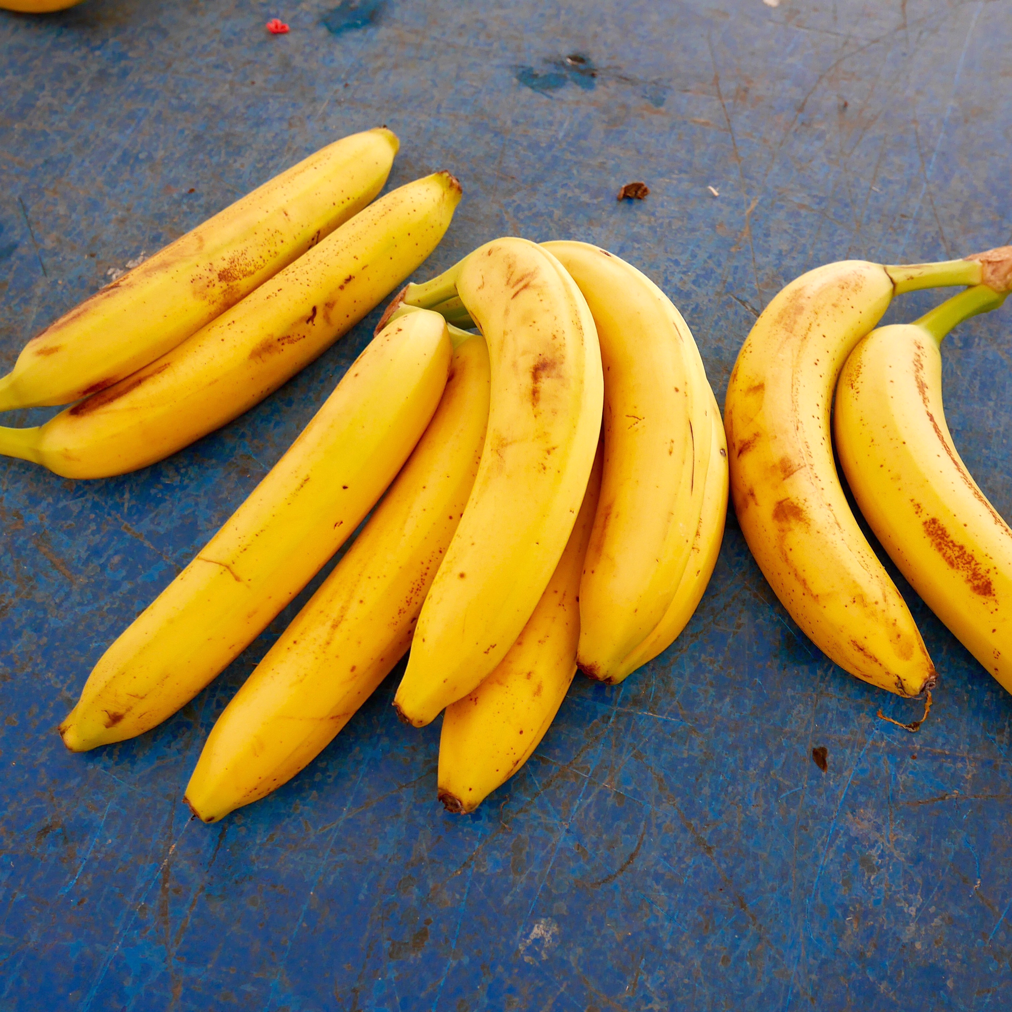 Are Bananas Really on Their Way to Extinction?