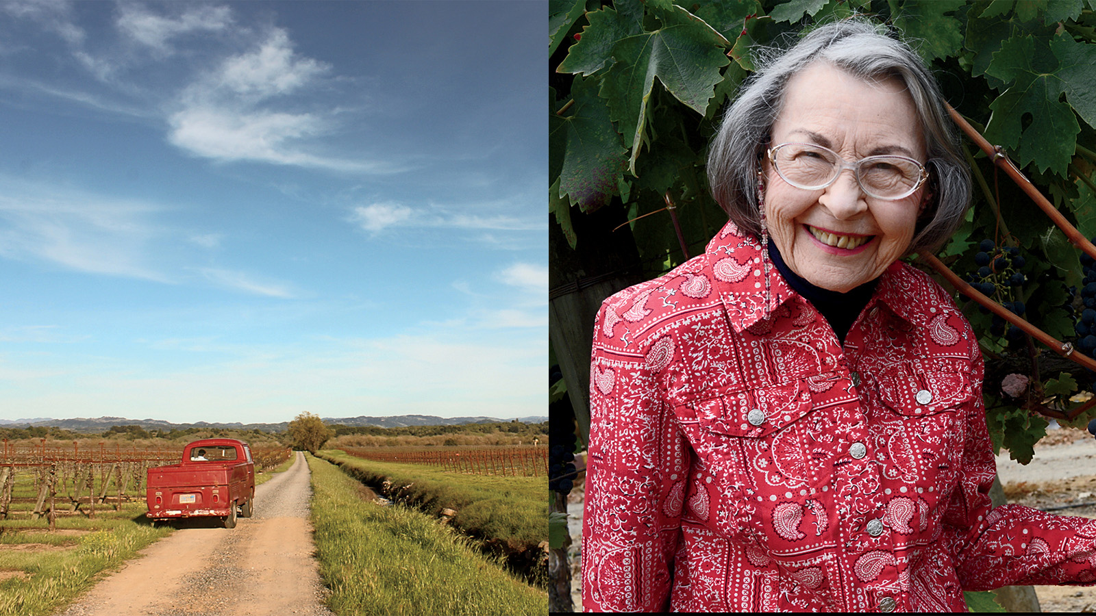 The Godmother of Pinot Noir