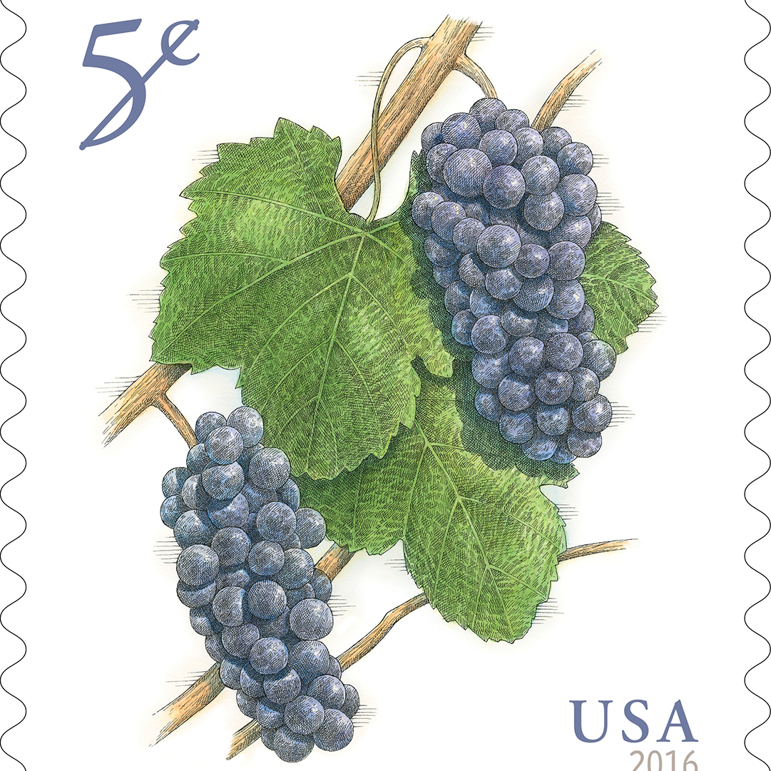US Government Solves International Crisis, Issues Pinot Noir Stamp