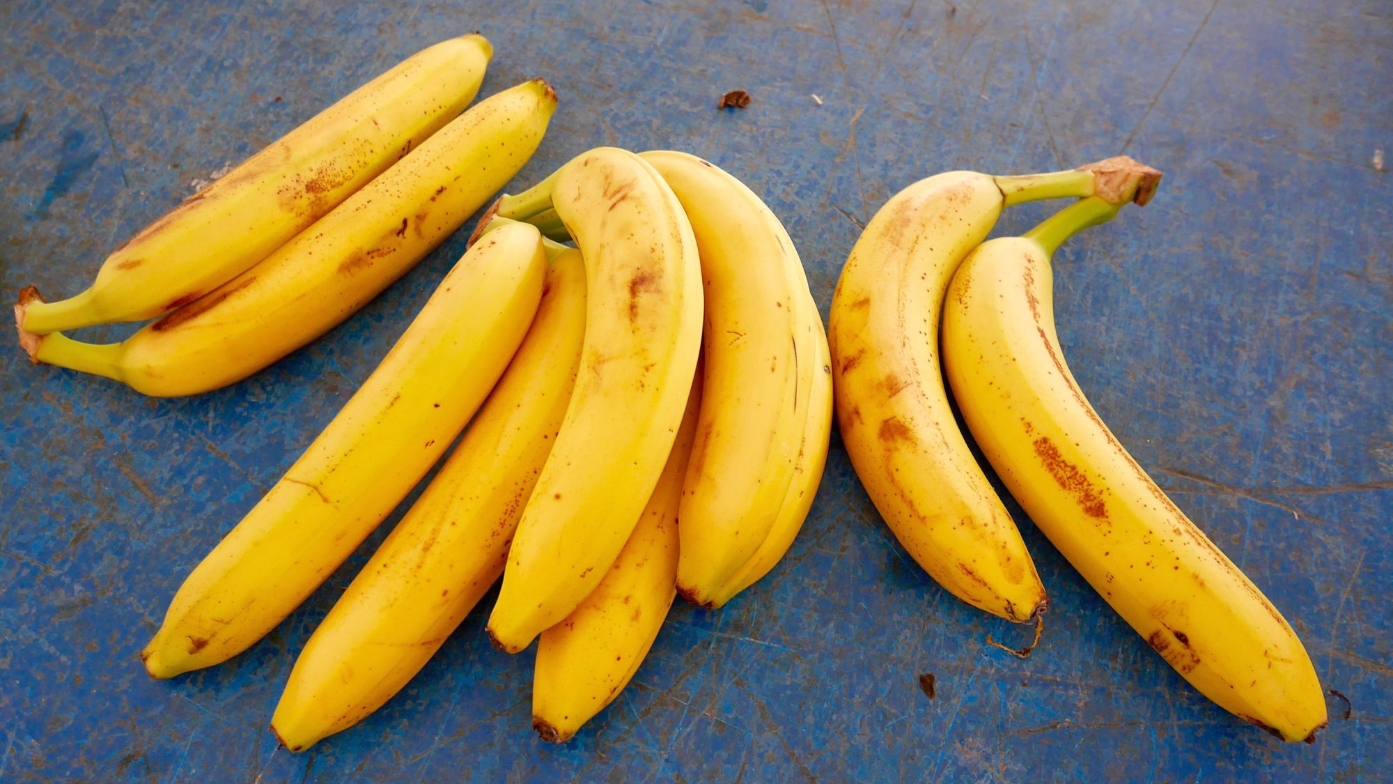 Bananas Could Be Heading for Extinction
