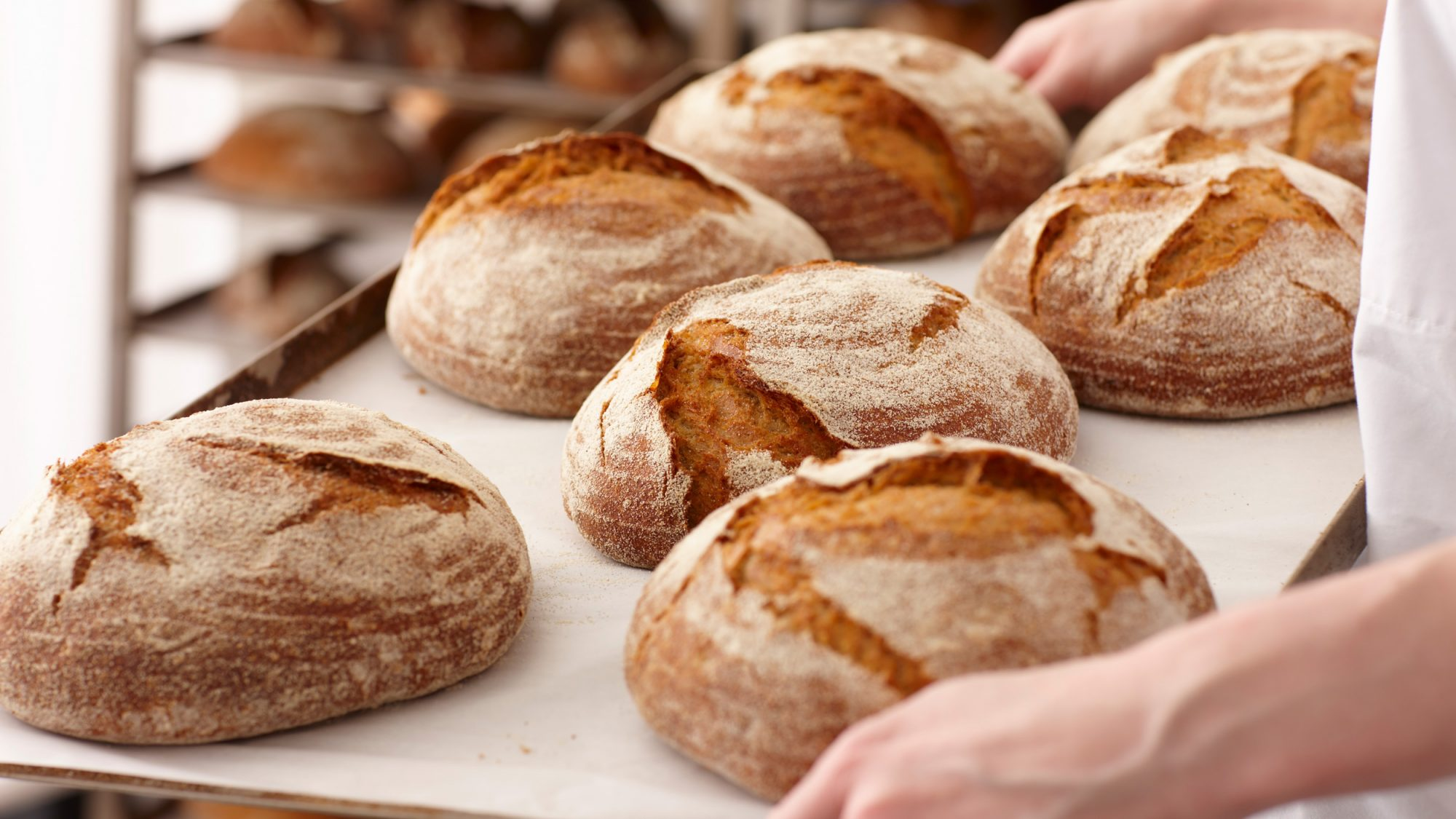 Scientists Claim to Have Created Gluten-Free Bread That Tastes Just Like the Real Thing