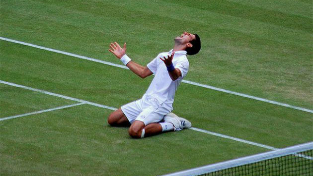 djokovic-vineyard-syndicate