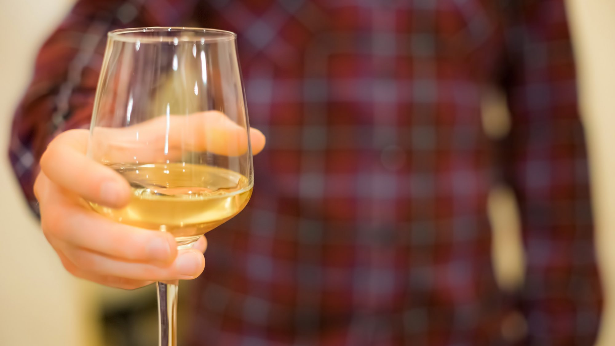 How to Hold a Wine Glass