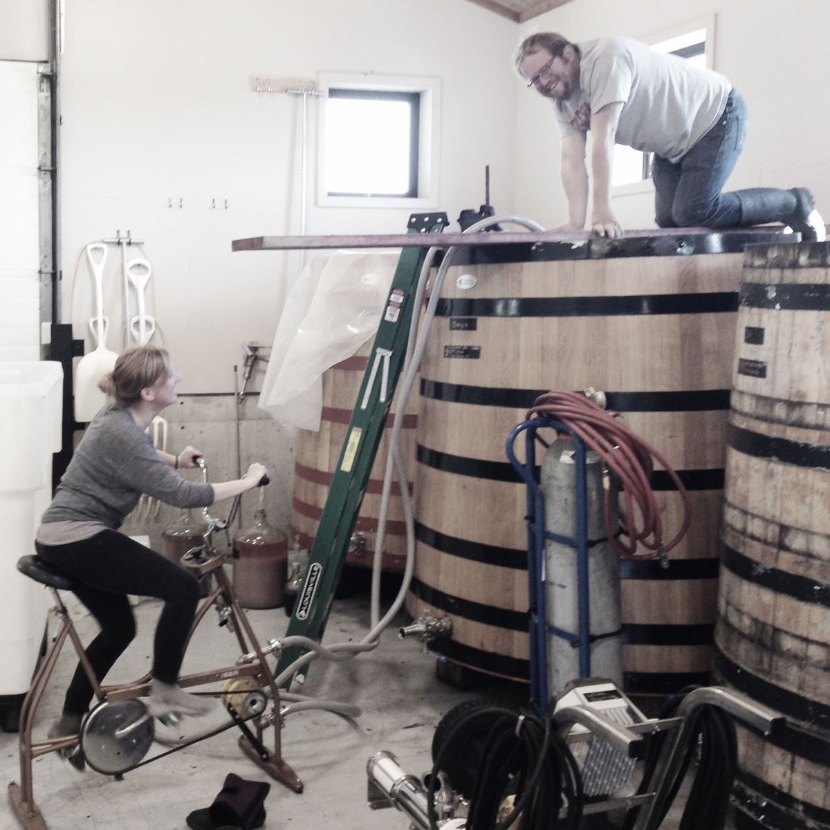 This Eco-Friendly Oregon Winery Uses No Electricity or Fuel