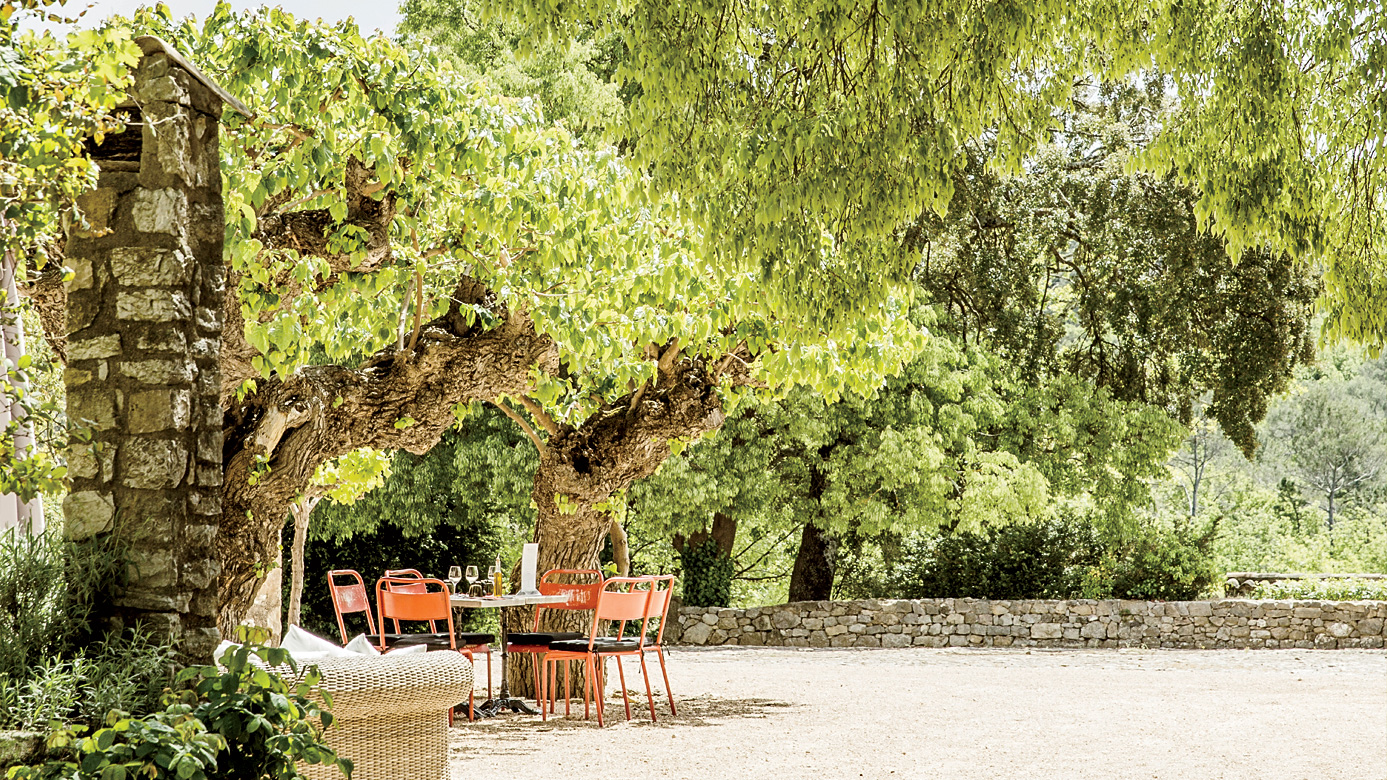 What to Do in Provence, France