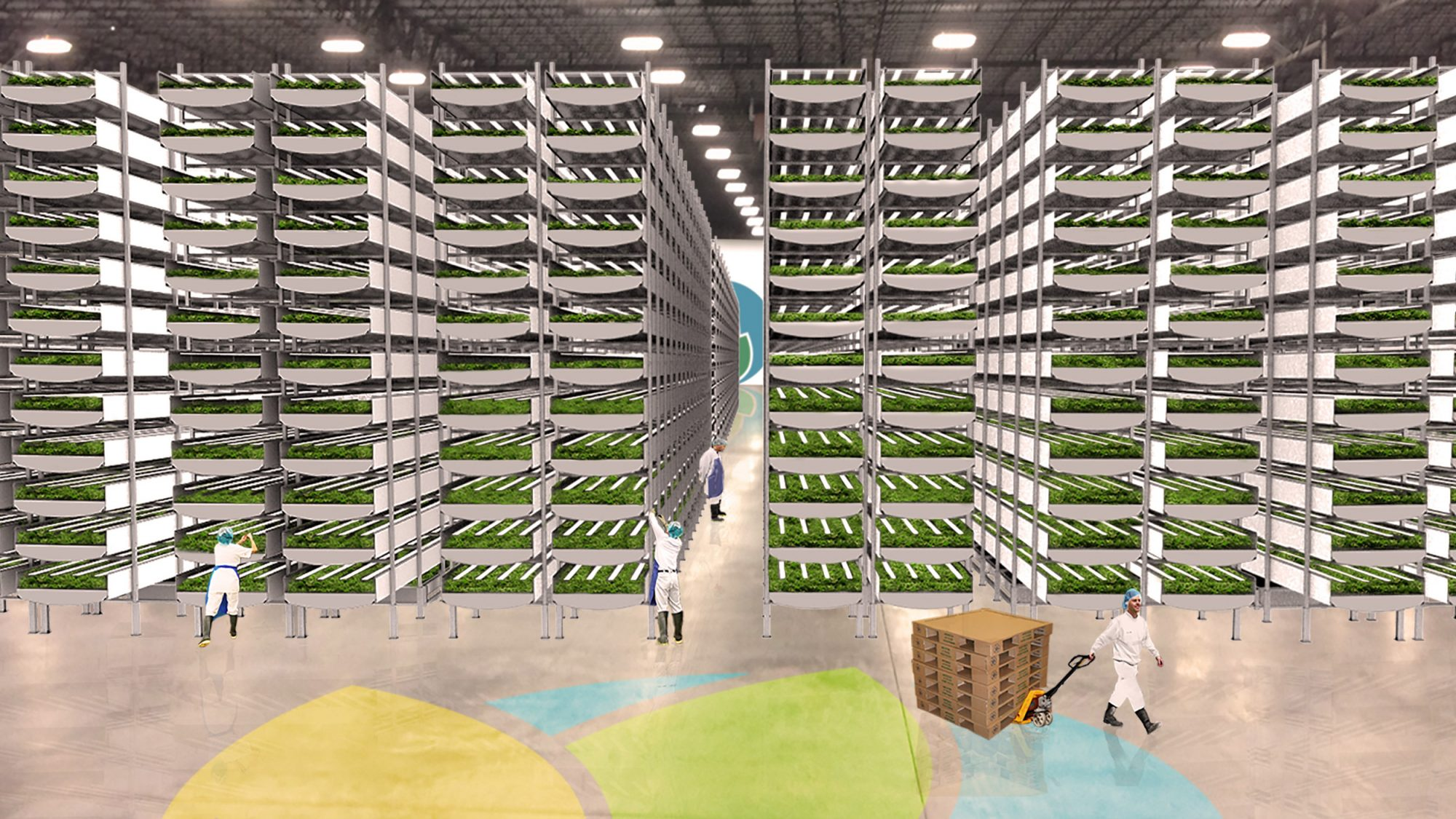 AeroFarms Indoor Vertical Farming