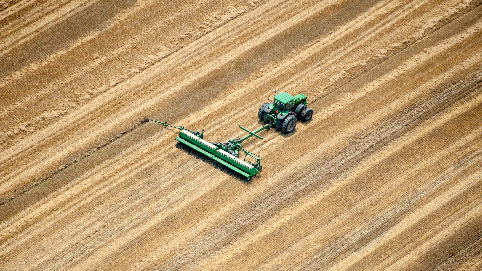 Wheat Climate Change