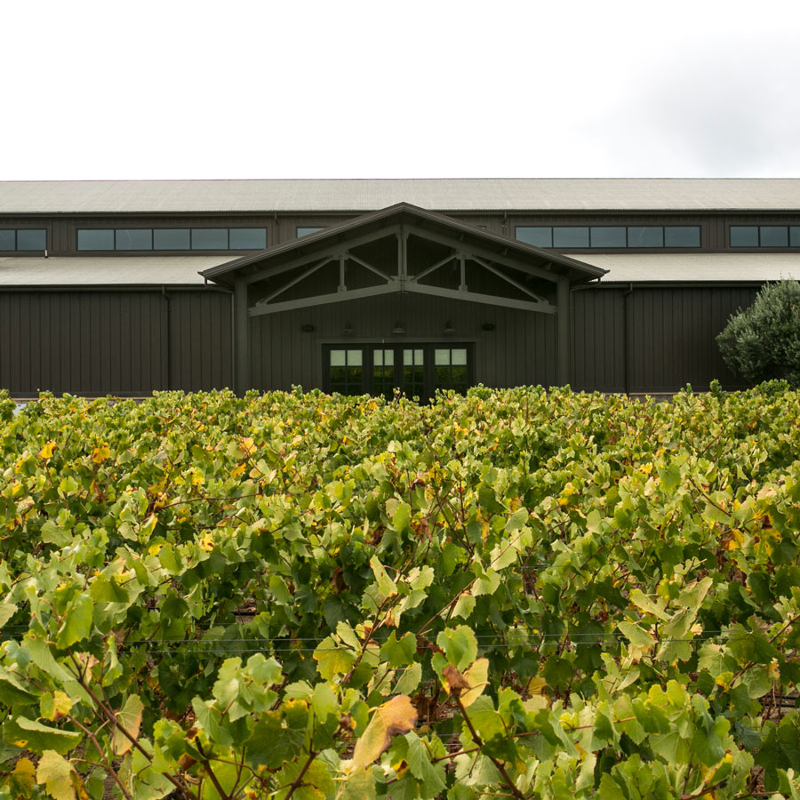 Benovia Winery: Boutique Pinot