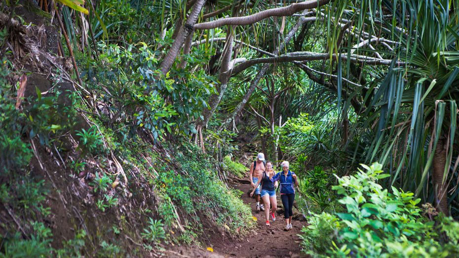 hiking-hawaii-family-travel-tl-FT1116.jpg