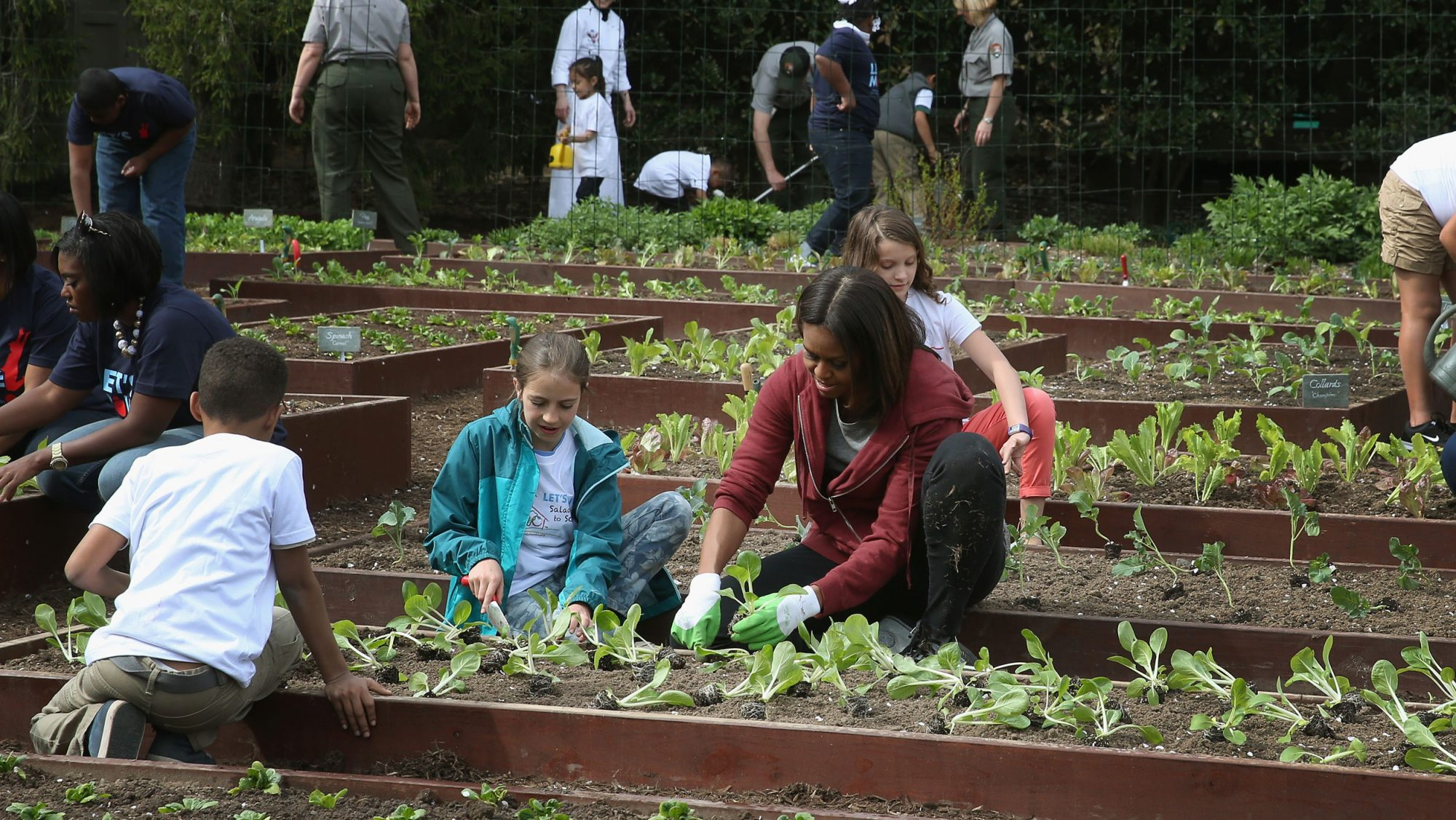 Michelle Obama Vegetable Garden