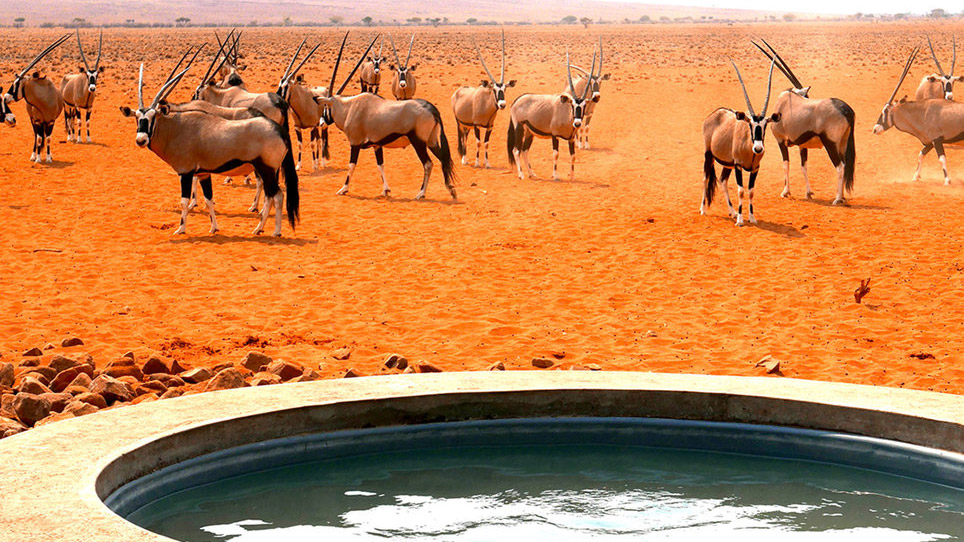 wolwedans-dune-lodge-namibia-bathtub-view-tl-FT-SYND1216.jpg