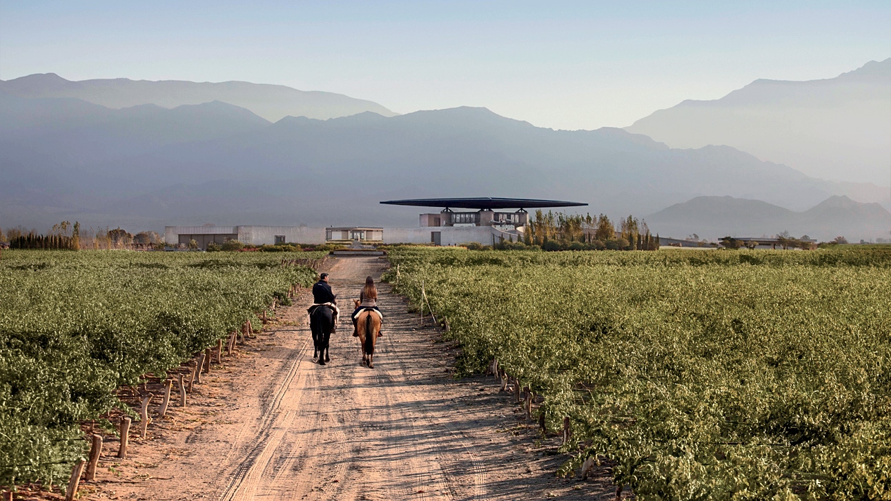 A Weekend Guide to Mendoza