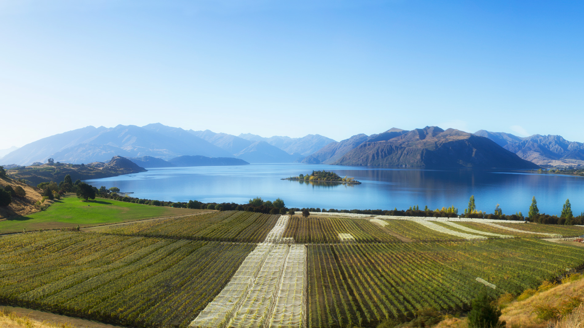 A Weekend Guide to New Zealand's Wine Country