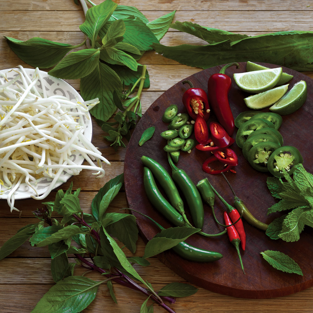 the-pho-cookbook-garnish-XL-BLOG0217.jpg