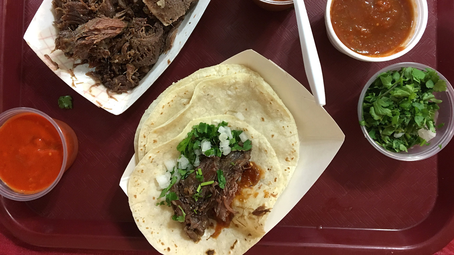 A Day in the Pit with a <i>Barbacoa</i> Master
