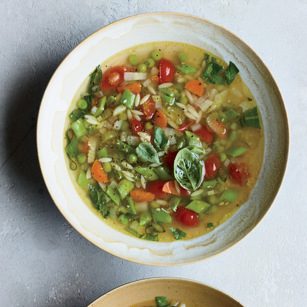 Chicken-Orzo Soup with 10 Vegetables