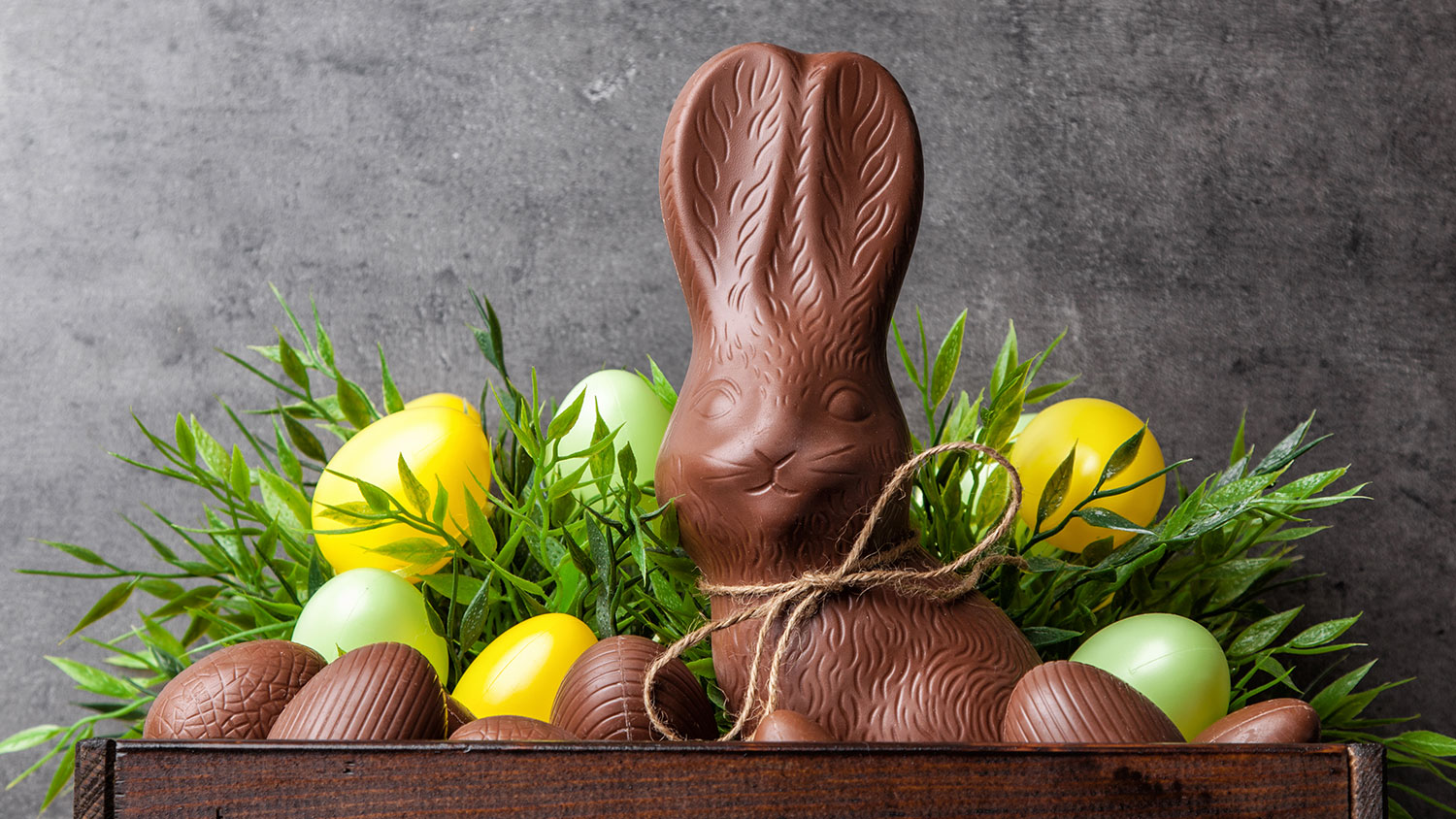 All of Your Questions About Chocolate Bunnies, Answered