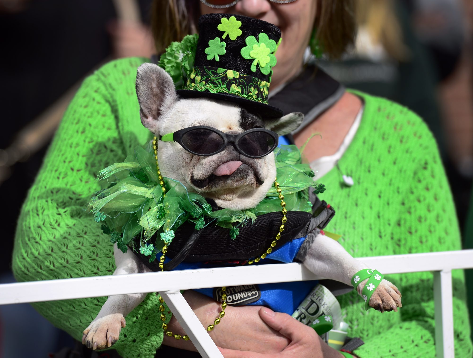 The 2016 Denver St. Patrick's Day Parade takes place in downtown Denver.
