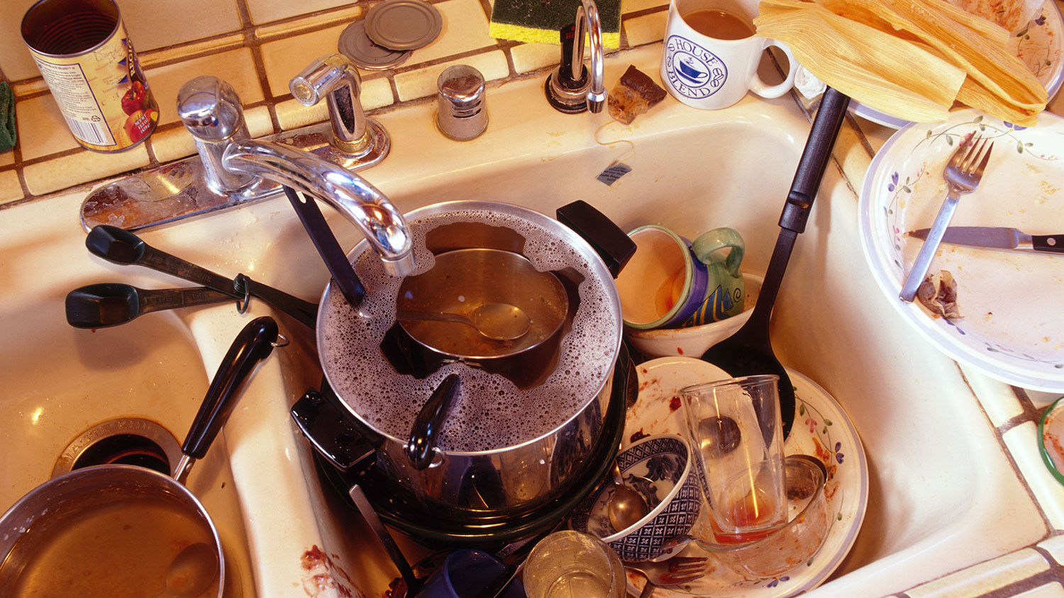 rancid milk dishes left in sink messy roommate