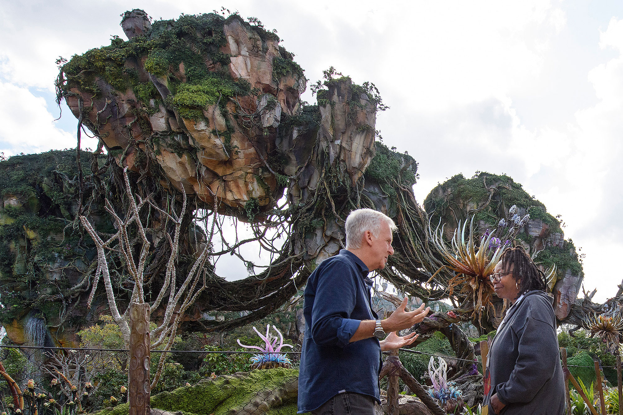 First Look: See the Floating Mountains of Walt Disney World's New Pandora (with Whoopi!)