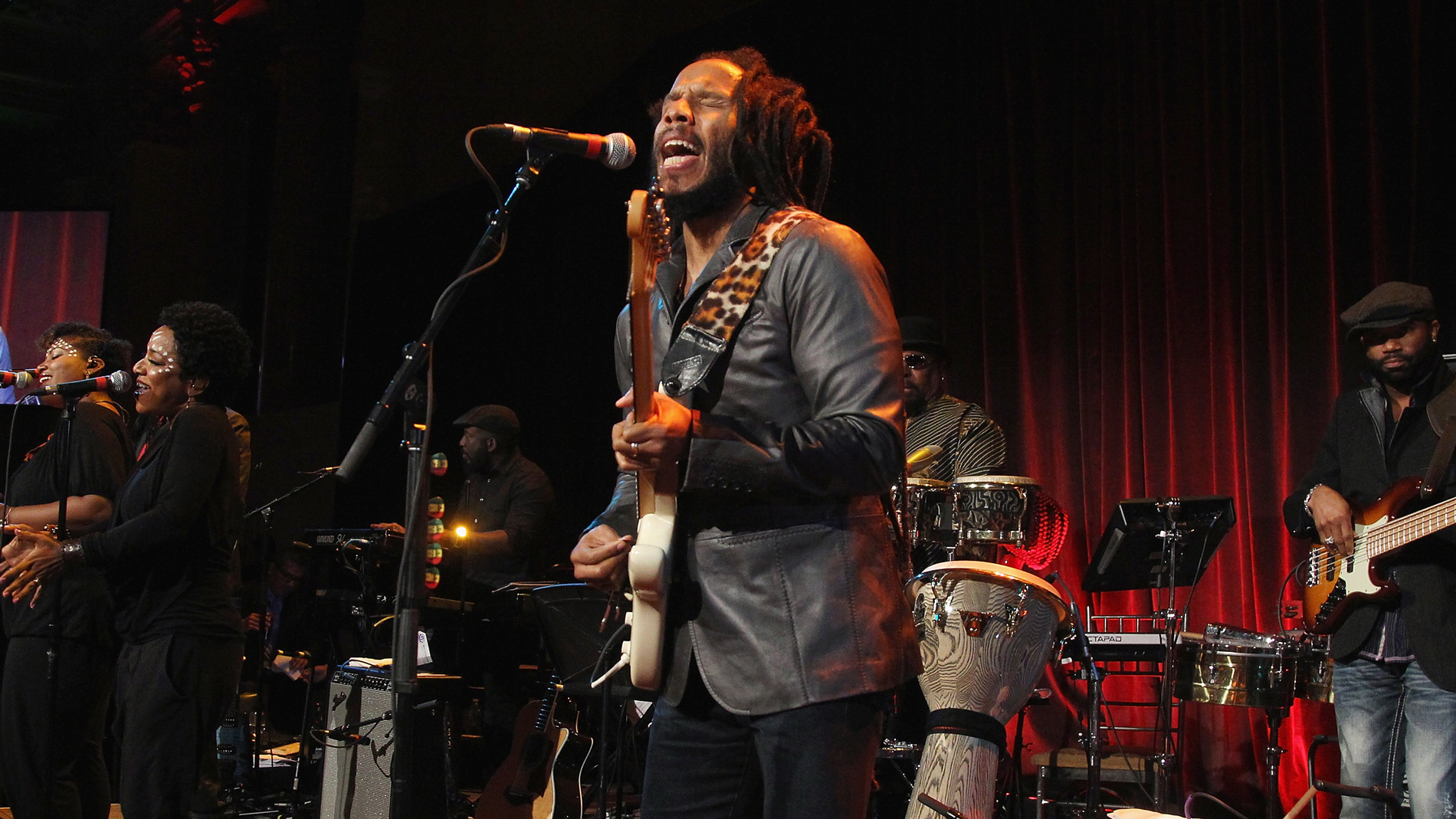 Ziggy Marley Cookbook
