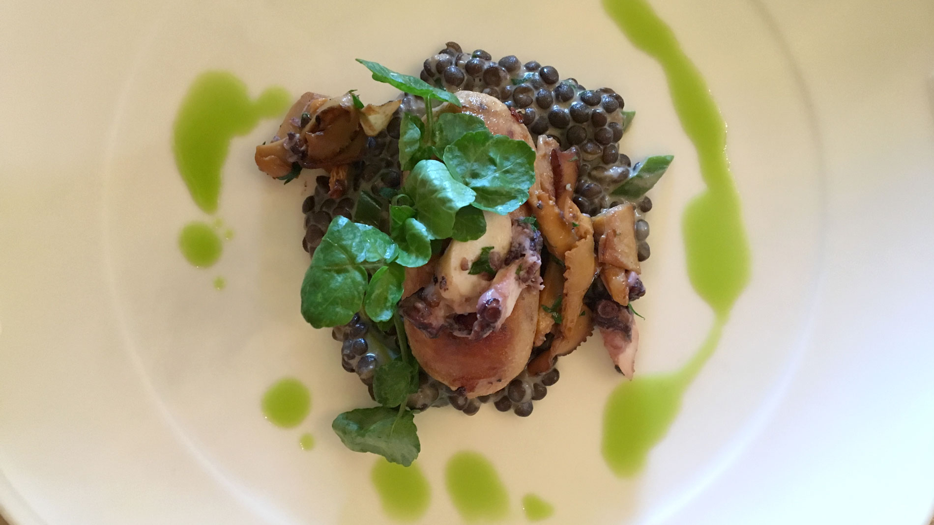 Foraged Chanterelles with Octopus Boudin