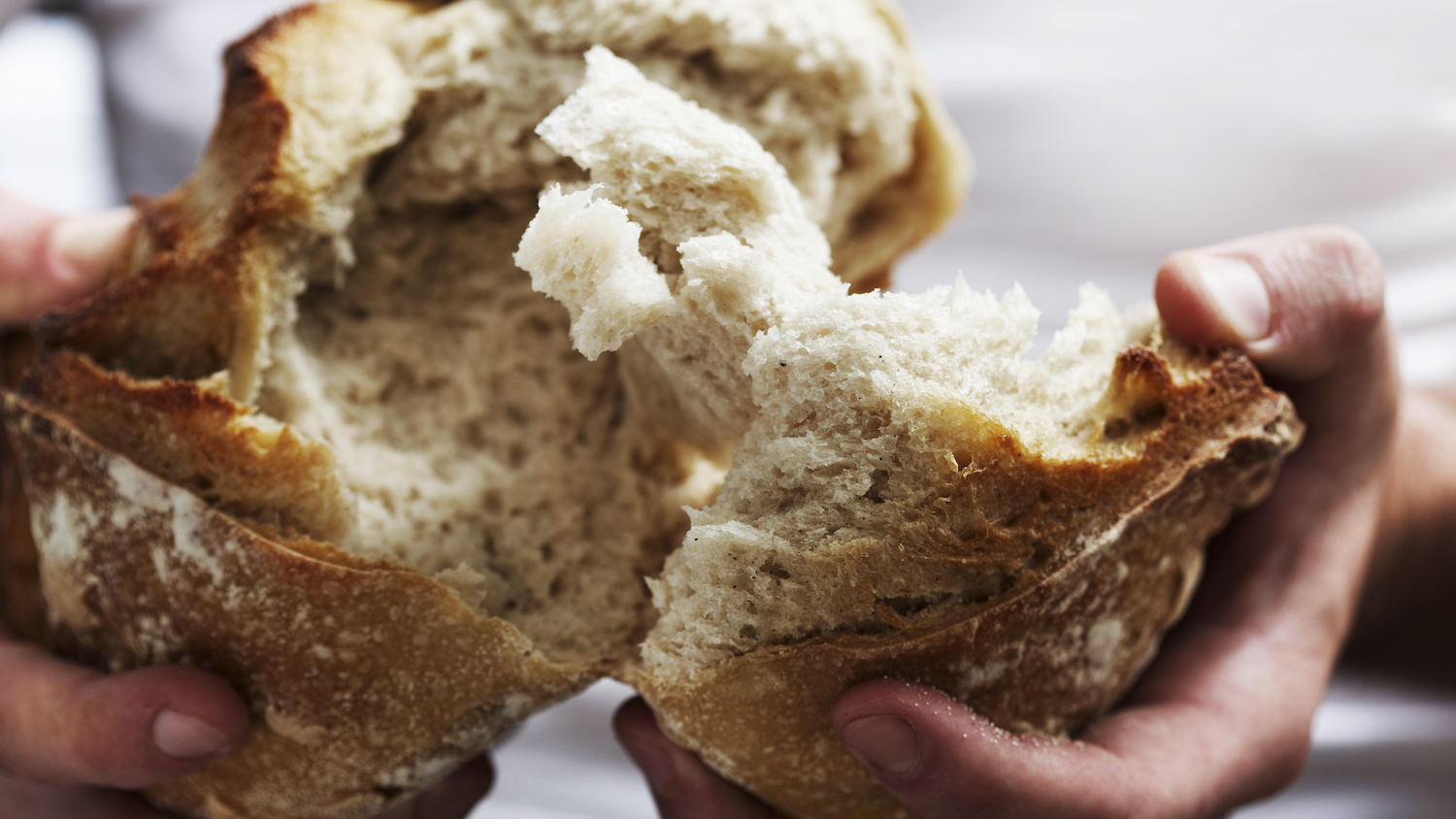 Cardiologist recommended bread