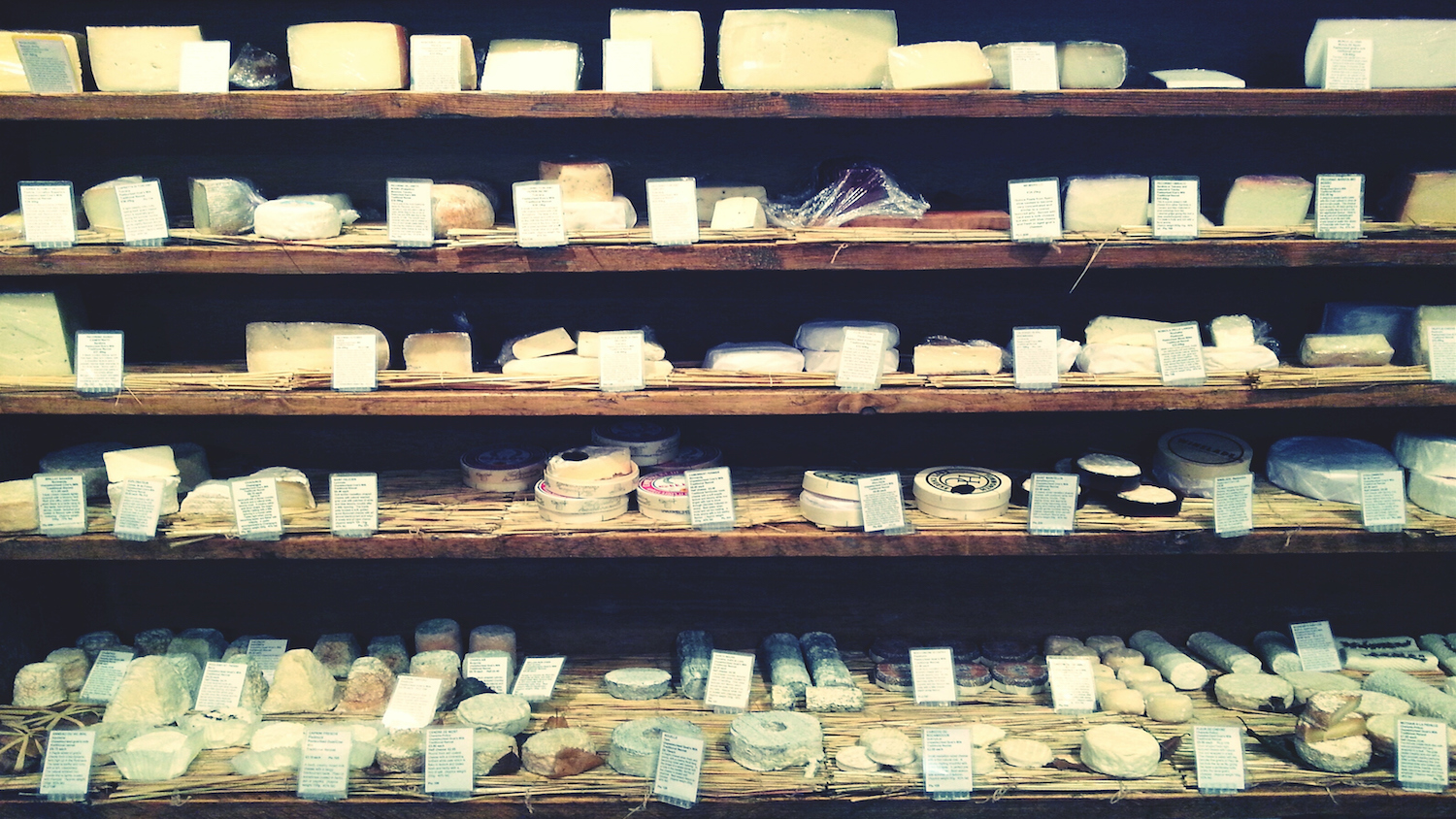 Want to Eat Cheese All Day? This Is the Job for You
