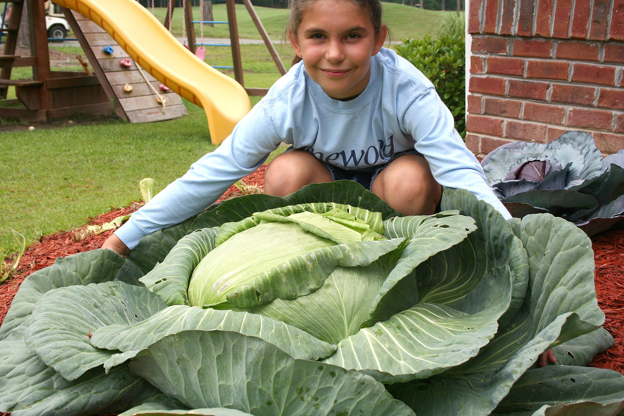 Katie with the giant cabbage she grew that started everything.