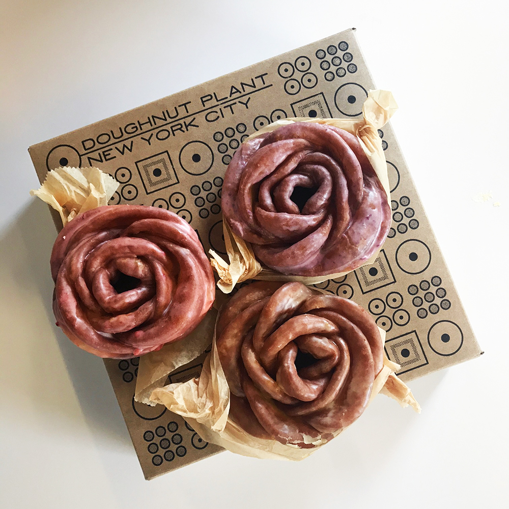 doughnut plant rose shaped