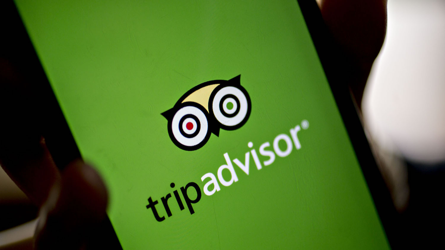 TripAdvisor and GrubHub partnership