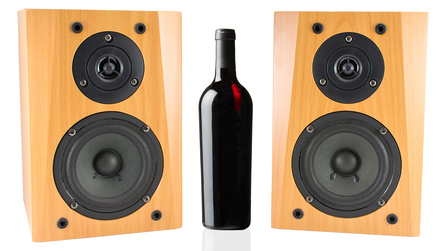 wine bottle speaker