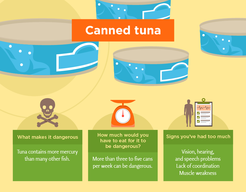 Is Canned Tuna In Water Good For Dogs