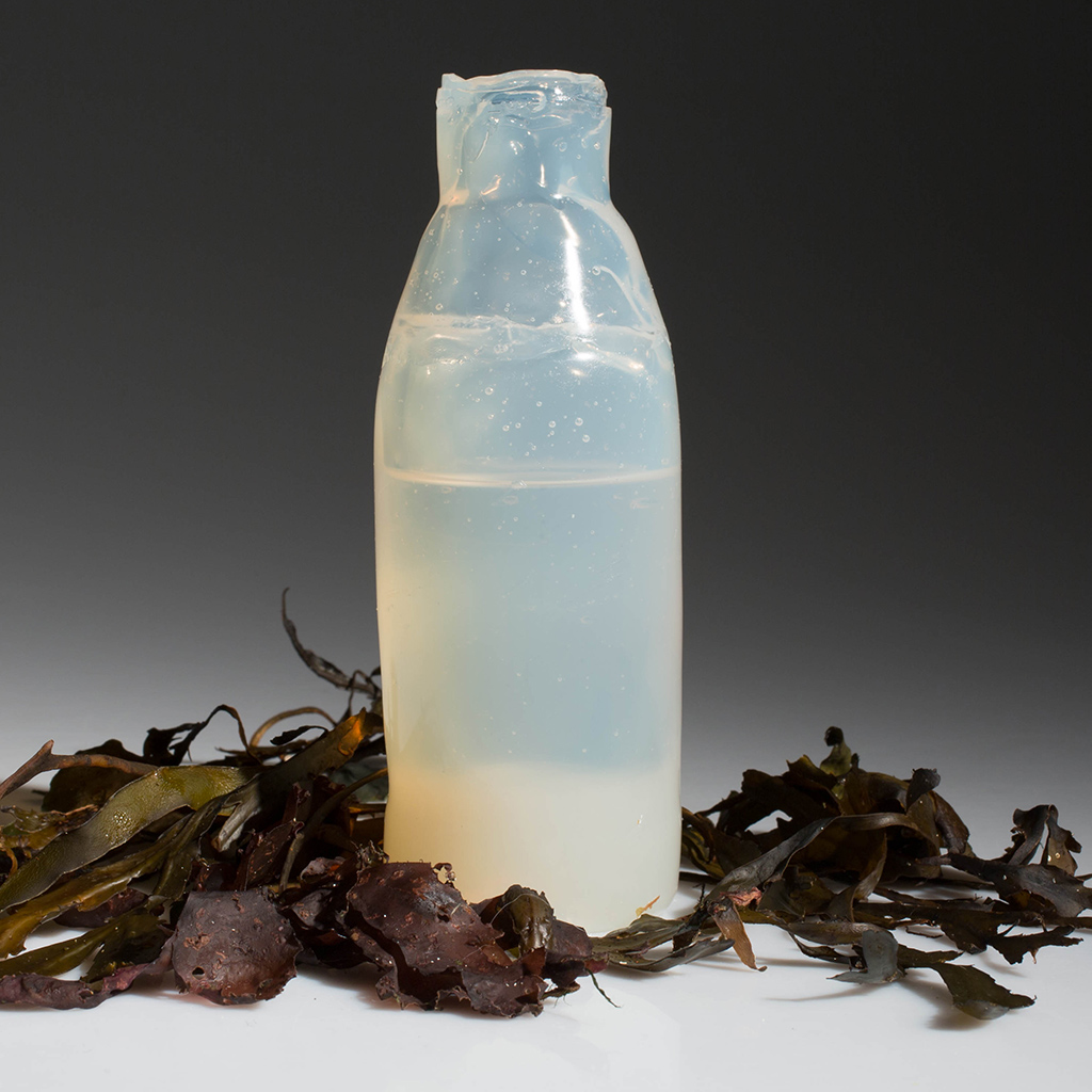 Algae Bottles May be the Future of Drink Packaging