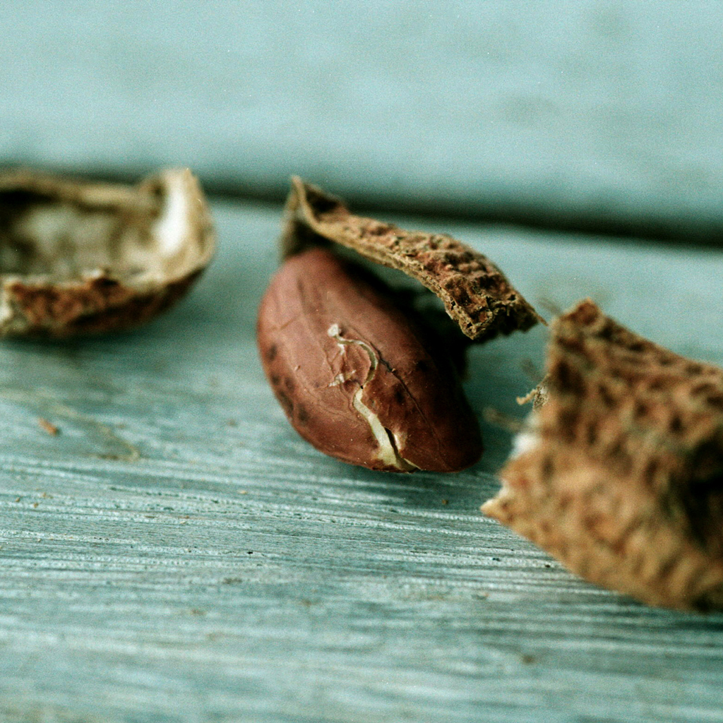 ANCIENT PEANUTS ANDES FWX
