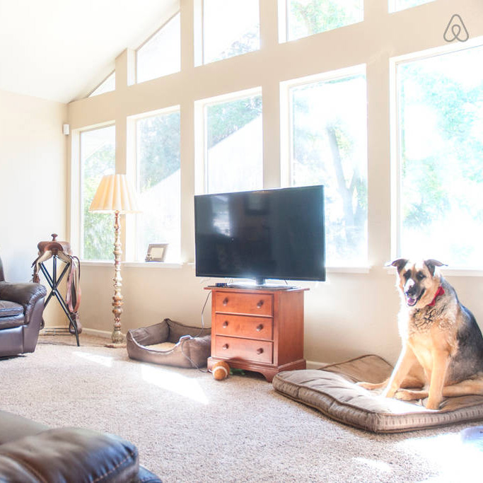 Rentals for Animal Lovers, Airbnb