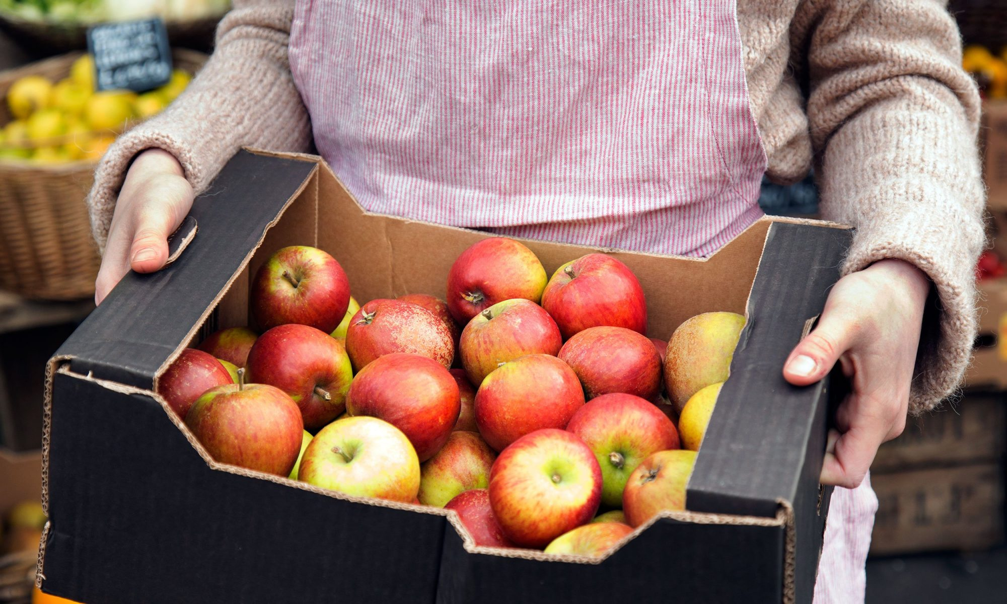 Your Fresh Apples Are Probably a Year Old