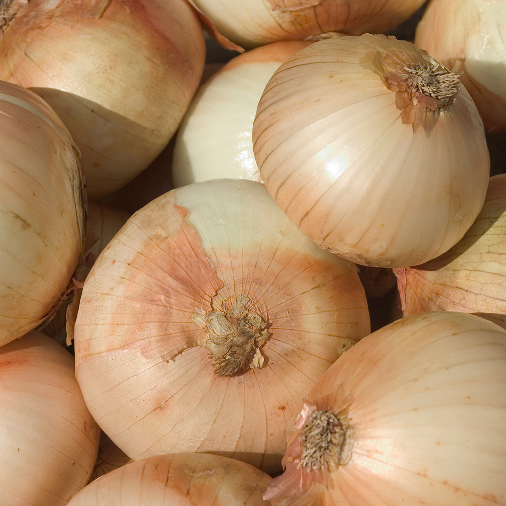 There are Now Onions That Won't Make You Cry or Smell
